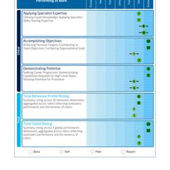 Saville Assessment WAVE Performance 360 Expert Report